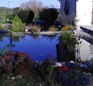 Bassin de récupération d'eau (100 m²) Corbigny